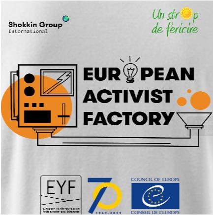 visual activist factory